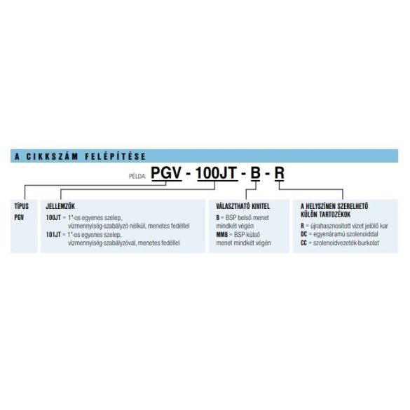 """HUNTER Mágnesszelep PGV-100 KK 1"""", 24V/AC, átfolyásszabályzó nélkül - Külső menetes"""